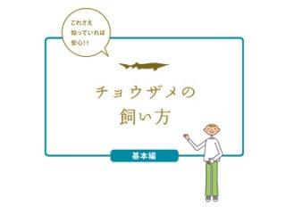 飼育マニュアル(基本編)