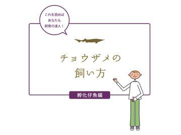 飼育マニュアル(孵化仔魚編)_メイン