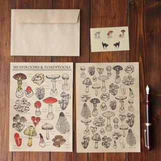 ●キノコ図鑑シリーズ●キノコと毒キノコのレターセット 13.CATS.WORKS×YO-CO