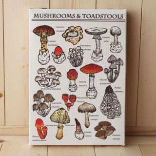 複製画●キノコ図鑑シリーズ●15種類のキノコと毒キノコ