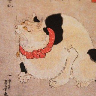 ●歌川国芳● 鼠よけの猫 ポストカード