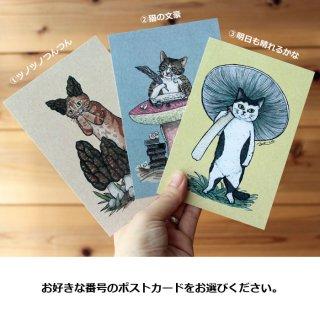 ●猫とネコのお友達2● ポストカード