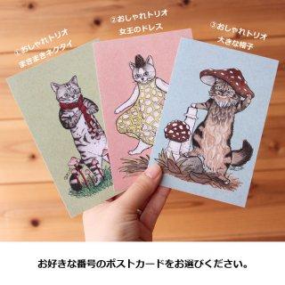 ●猫とネコのお友達6●おしゃれトリオ ポストカード