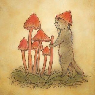 ●猫とネコの絵本シリーズ● ネコの帽子 ポストカード