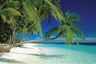 モルディブのビーチ ポスター