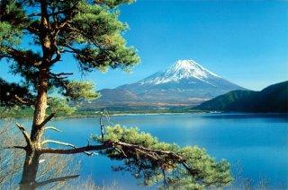 富士山/松 ポスター