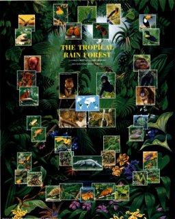 熱帯雨林の動物 ポスター(ミニサイズ)