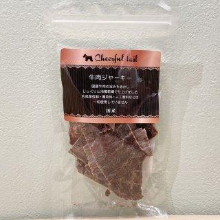 牛肉ジャーキー 40g[4560100020118]