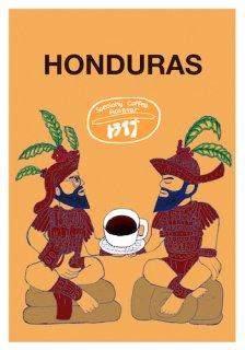 ニカラグア ブエノスアイレス[500g]