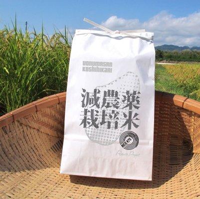 【REBIRTH PROJECT】<RICE475 減農薬栽培米> 令和2年度 新潟県南魚沼産コシヒカリ 簡易パッケージ5kg
