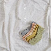 Spring rib Socks<br>Set of 5<br>『Team』 <br>19SS <br>______Restock