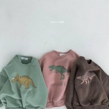Dinosaur sweat<br>3 color<br>『lala land』<br>20 FW <br>定価<s>2,900円</s><br>S/XXL