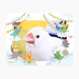 BIRD SKY CIRCUS フォトフレーム