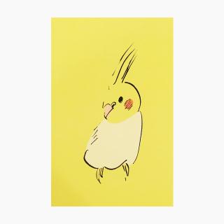 IROTORIDORI ポストカード(オカメインコ)