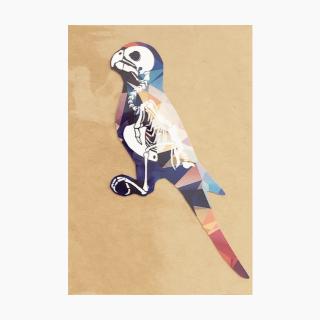 鳥デザインステッカー(骨格)