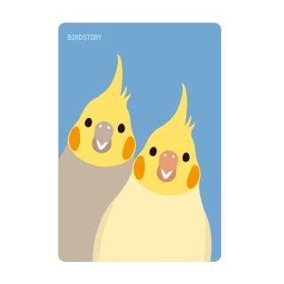 パスケース(SMILE BIRD / オカメインコ)