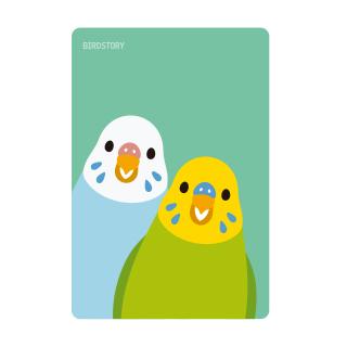 パスケース(SMILE BIRD / セキセイインコ)