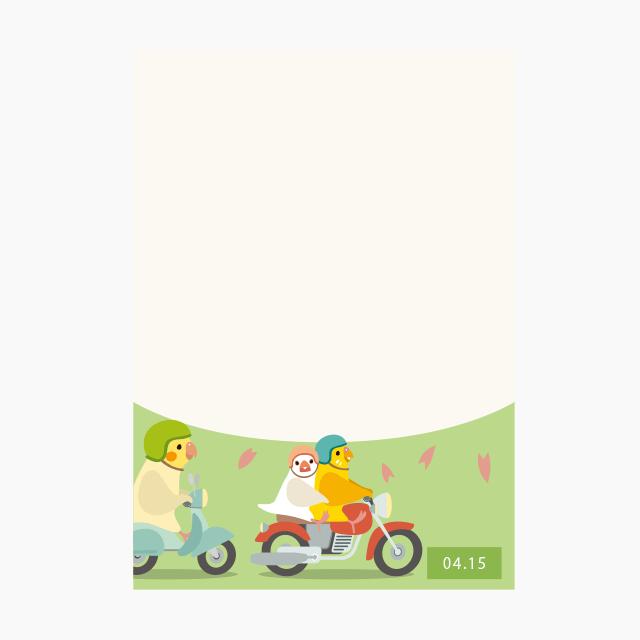 BIRDSTORY パラパラ日めくりカレンダーメモ帳(4月〜6月編) 商品の様子