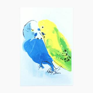 オクムラミチヨ セキセイインコ ポストカード