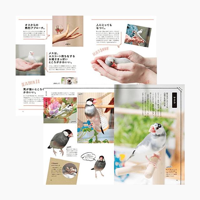 幸せな文鳥の育て方 商品の様子
