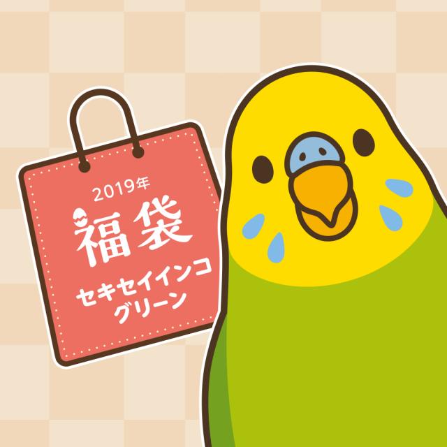 BIRDSTORY福袋 2019(セキセイインコ グリーン)