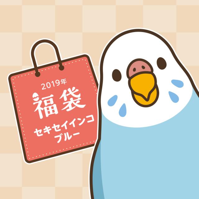 BIRDSTORY福袋 2019(セキセイインコ ブルー)