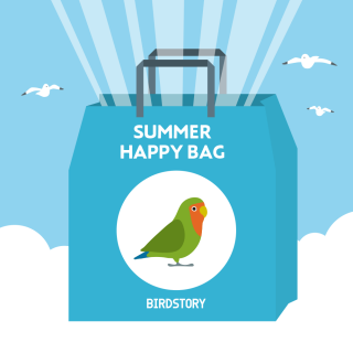 SUMMER HAPPY BAG 2020(BIRDSOTRY / コザクラインコ)
